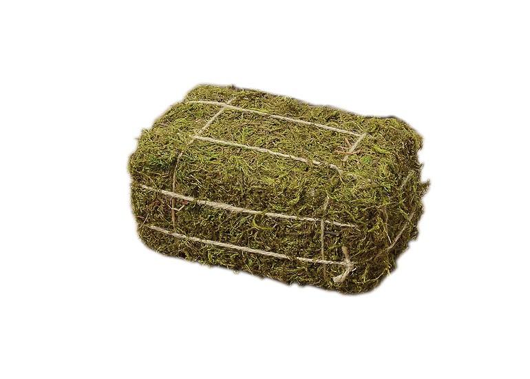 Deko objekt moosballen natur gras ballen deko ablage for Deko objekte wohnzimmer